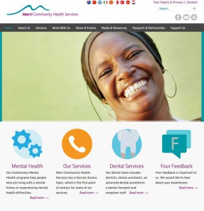 community health service website development