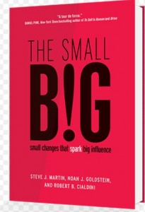 the big small marketing books